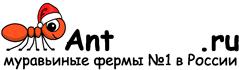 Муравьиные фермы AntFarms.ru - Новокузнецк